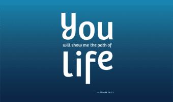 You Show Me